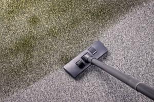 Baytown-Carpet-Cleaning